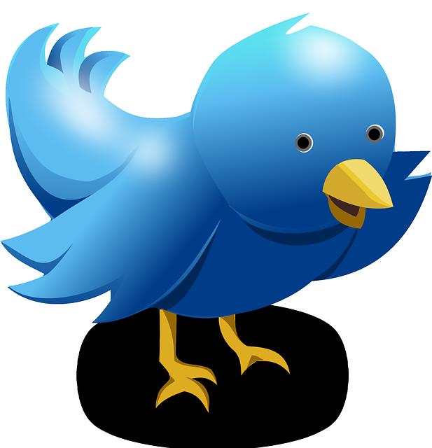 Смешные ники для Твиттера на английском языке с переводом